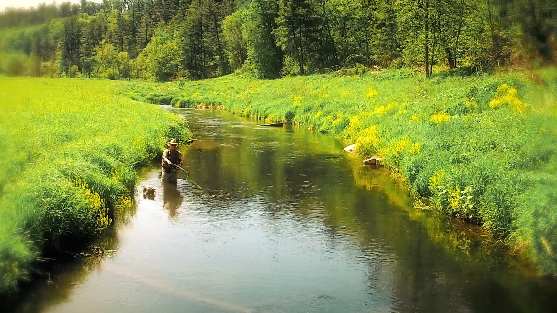 Boscobel Spring Fly Fishing